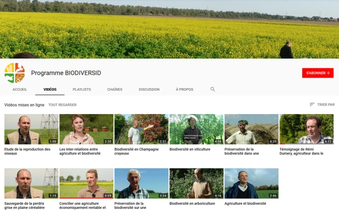 youtube-biodiversid